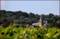 Hautvillers - Abbaye2 © Carine Charlier © bis