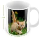 Mug / Tasse photo