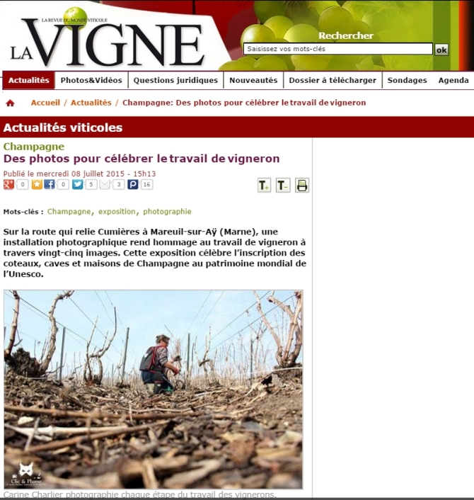 Article La Vigne