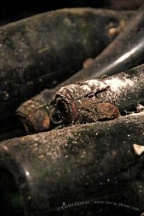 Anciennes bouteilles en stockage - Champagne Demière.