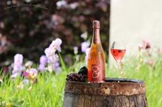 Rosé brut - Champagne Demière.