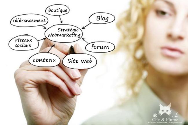 Infographie Web-Marketing