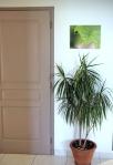 toile photo 30x40 cm