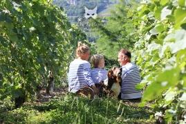 Angéline, Jack, David et César du Champagne Lhopital-Tripet à Venteuil.