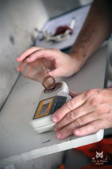 """Mesure du taux de sucre - Coopérative de Châtillon """"La Grappe"""""""