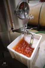 Jus de Chardonnay - Champagne Lancelot-Goussard à Avize.