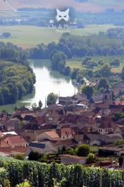 Cumières et la Marne depuis les chemins de rando entre Cumières et Hautvillers.