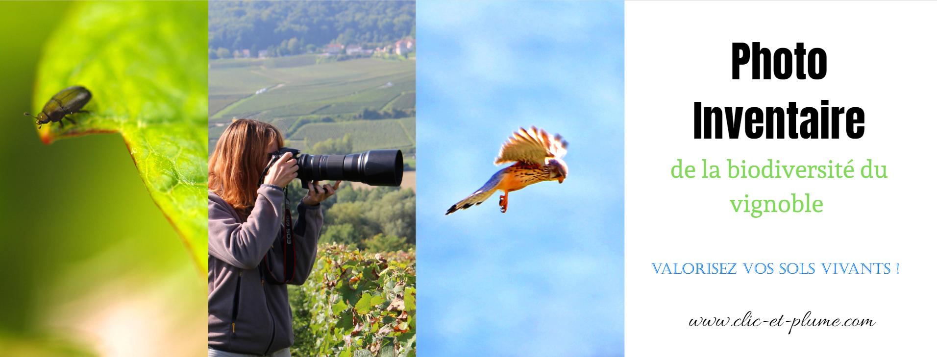 photo inventaire biodiversite carine charlier